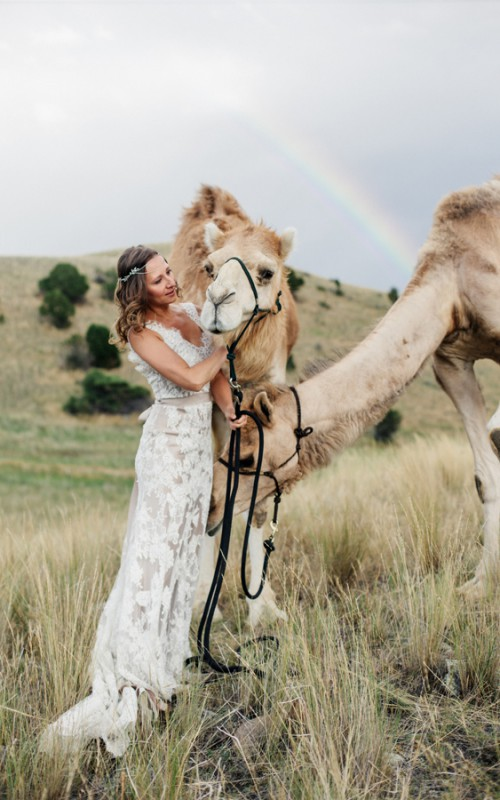 Styled Shoot at Camel Discovery